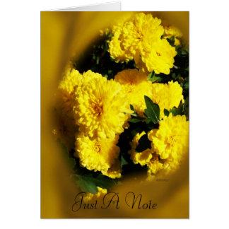 Momias amarillas tarjeta pequeña