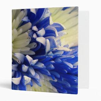 Momias azules y blancas de la carpeta - de la arañ