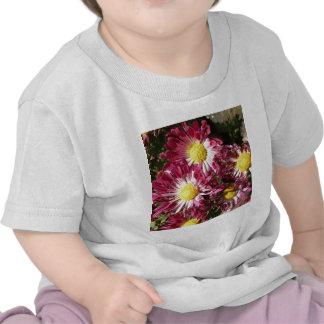 momias coloridas camiseta