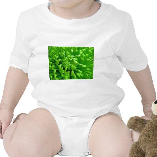 Momias verdes de la araña camisetas