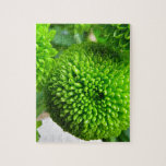 Momias verdes del botón puzzles
