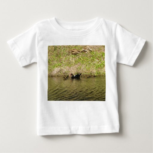 Momma and Baby Ducks Infant  T-shirt