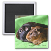 Momma and Baby Guinea Pig Magnet