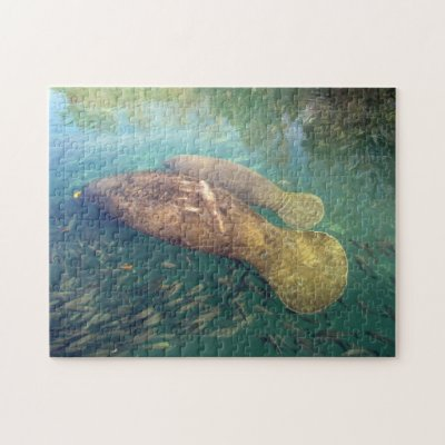 little manatee with a blue floater jigsaw puzzle zazzle com