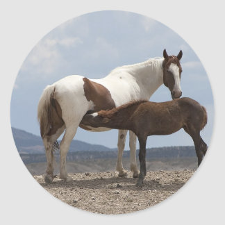 Momma and Baby Mustang Classic Round Sticker