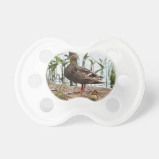 Momma & Baby 2 Baby Pacifiers