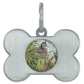 Momma & Baby Pet Name Tag