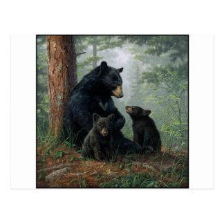Momma Bear Postcard