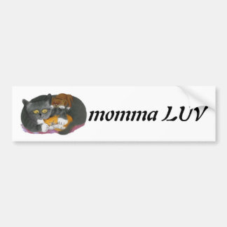 Momma  Cat and her Two Kittens Car Bumper Sticker