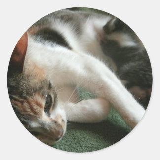 Momma Cat Classic Round Sticker