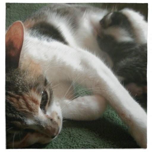 Momma Cat Printed Napkin