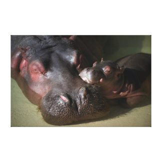 Momma Hippo with Baby Canvas Art