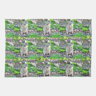 Ground Kitchen Towels   Zazzle