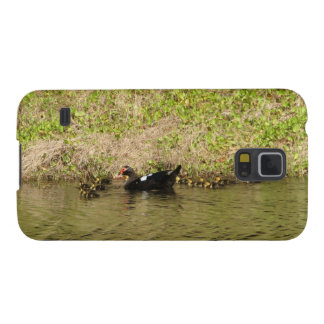 Momma Muscovy and Baby Ducks Samsung Galaxy Nexus Cases