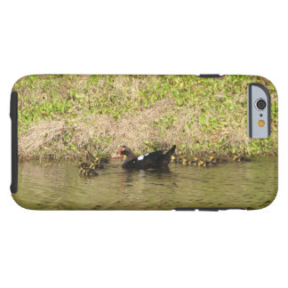 Momma Muscovy and Baby Ducks Tough iPhone 6 Case