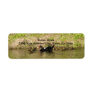 Momma Muscovy and Baby Ducks Customizable  Label
