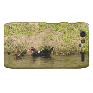 Momma Muscovy and Baby Ducks Droid RAZR Case