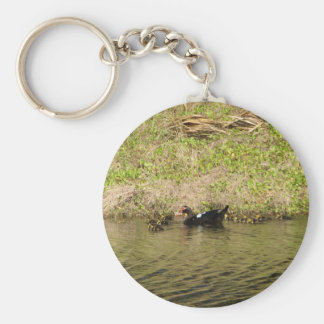 Momma Muscovy and Baby Ducks Keychain