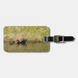 Momma Muscovy and Baby Ducks Luggage Tag
