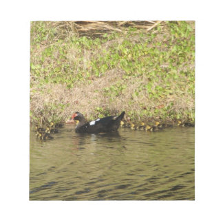 Momma Muscovy and Baby Ducks Notepad