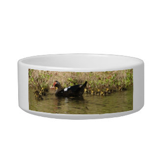 Momma Muscovy and Baby Ducks Pet Bowl