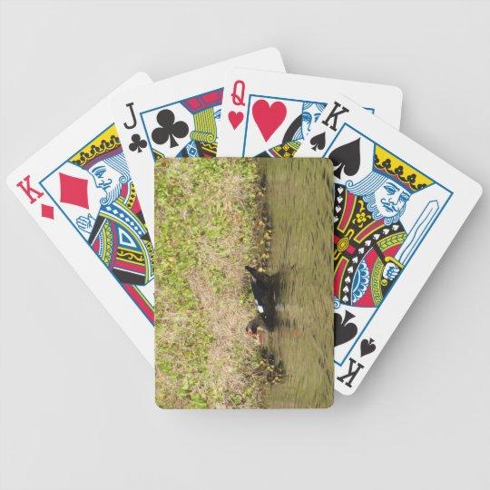 Momma Muscovy and Baby Ducks Playing Cards
