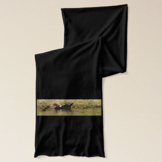 Momma Muscovy and Baby Ducks Scarf