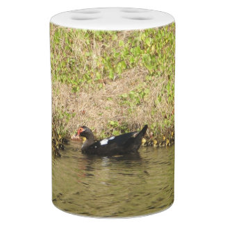 Momma Muscovy and Baby Ducks Soap Dispenser And Toothbrush Holder