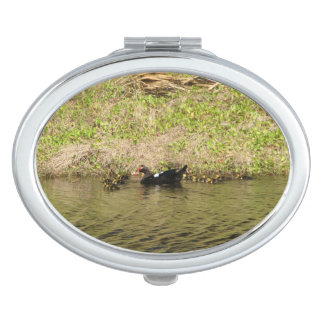 Momma Muscovy and Baby Ducks Vanity Mirror