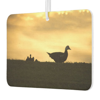 Momma Muscovy Duck and Baby Ducklings at Sunrise Car Air Freshener