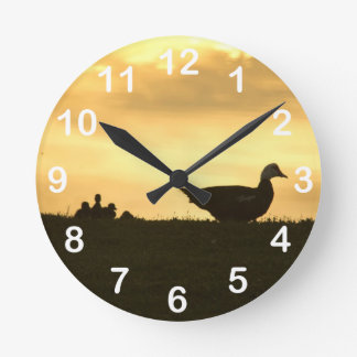 Momma Muscovy Duck and Baby Ducklings at Sunrise Round Wallclock