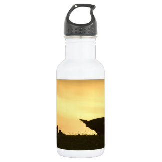 Momma Muscovy Duck and Baby Ducklings at Sunrise Stainless Steel Water Bottle
