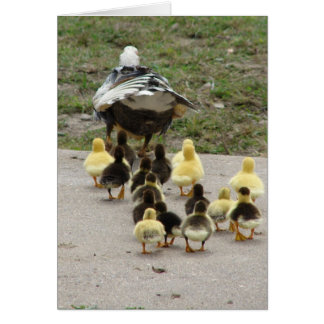 Momma Muscovy Leading Her Ducklings Card