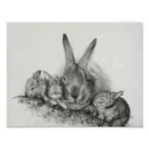 Momma Rabbit With Baby Bunnies Pencil Drawing Poster