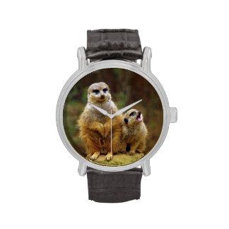 Momma y bebé Meerkat 1 Reloj