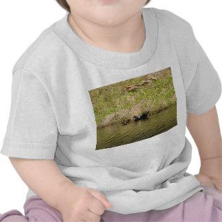 Momma y camiseta del niño de los patos del bebé