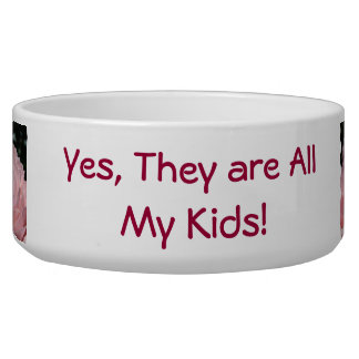 Mommy Dog bowls Yes they are all my Kids Humor