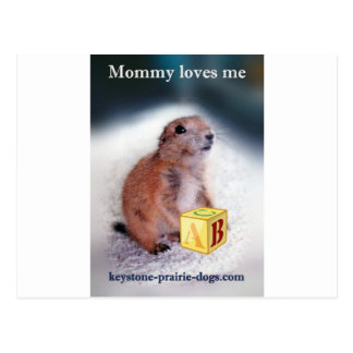 """Mommy loves me"" baby clothes Postcard"