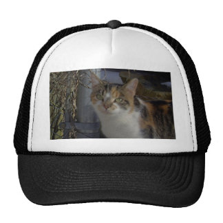 Mommy Mesh Hat