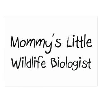Mommys Little Wildlife Biologist Postcard