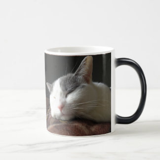 Momo Cat Coffe Mug Customizable Template