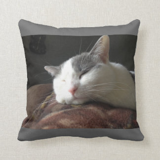 Momo Cat Throw Pillow Template