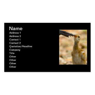 Mom's Foot Double-Sided Standard Business Cards (Pack Of 100)