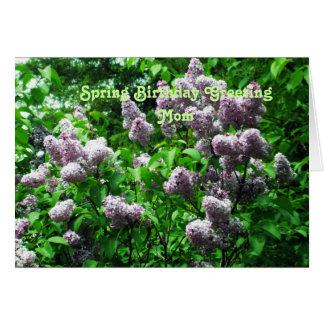 Mom's Special Birthday-Lilac Bush Card