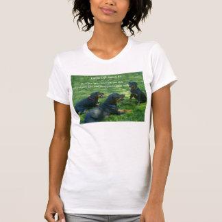 Moms Teach ladies scoop T Shirts