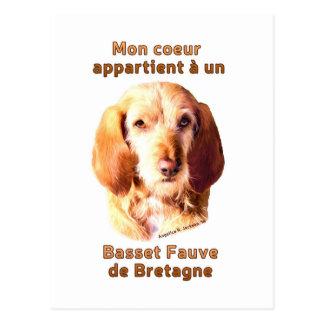 Mon Coeur Appartient A Un Basset Fauve de Bretagne Postcard