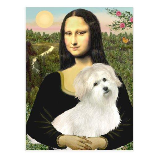 Mona Lisa - Coton de Tulear 7 Postcard