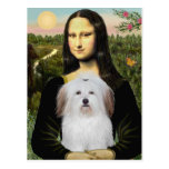 Mona Lisa - Coton De Tulear Post Cards