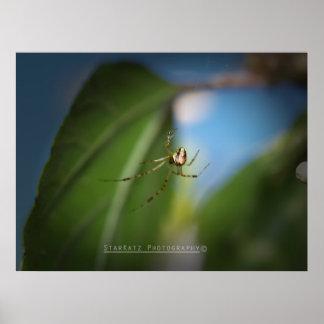 'Mona Lisa Spider' Poster
