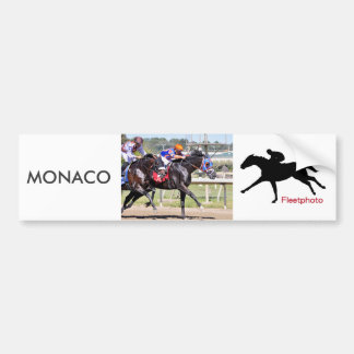 Monaco & Confederate Bumper Sticker